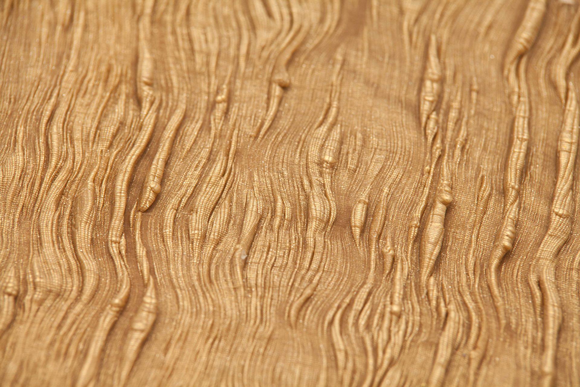 Gold Wood - Tzuri Gueta